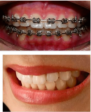 What are the main fields of study for orthodontists?